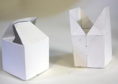 Packaging Visualizaiton